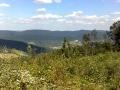 emilia-okolica-16-max